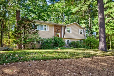 Main Photo: 75 Fort Sumter Dr, Holden, MA 01520