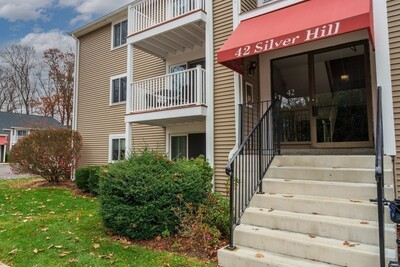 Main Photo: 42 Silver Hill Lane Unit 9, Natick, MA 01760