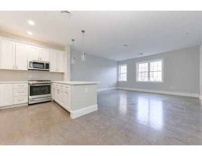 Main Photo: 8 Sanborn Street Unit 4009, Reading, MA 01867