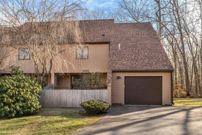 Main Photo: 24 Danforth Way Unit 24, Franklin, MA 02038