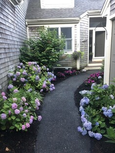 Main Photo: 26 Wayside Path Unit 26, Plymouth, MA 02360