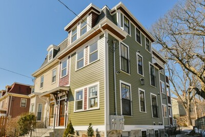 Main Photo: 30 Copeland St, Roxbury, MA 02119